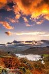 White Moss overlooking Rydal Water-Neil_Alexander.jpg