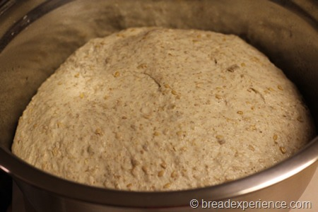 five-grain-rye-sourdough_1284