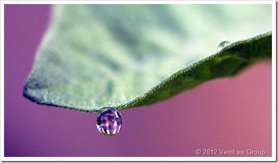 Droplet_2_IMG_0191