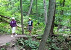 1307093 July 23 Ann Bill Walk Through Woods