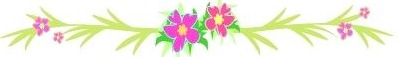 4904409-mix-flower-and-leaf-borders