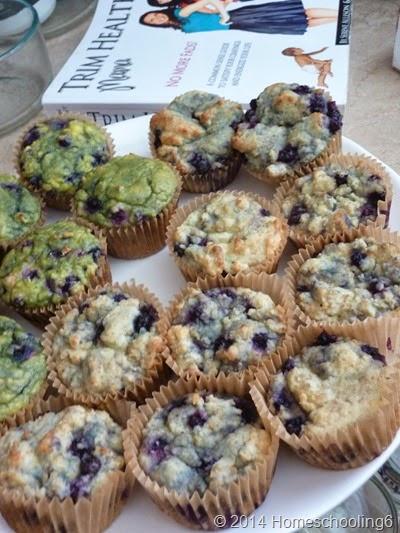 Trim Healthy Mama Muffins