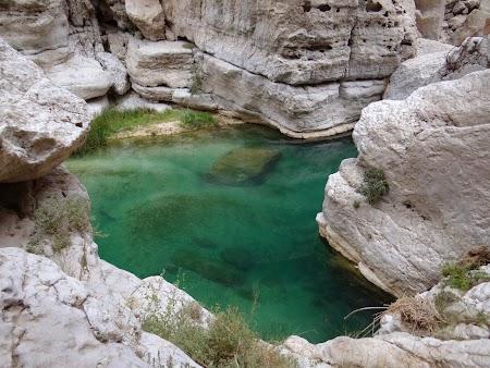 41. Prin Wadi Shab.JPG