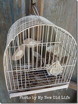 gabbietta rose e uccellini 14
