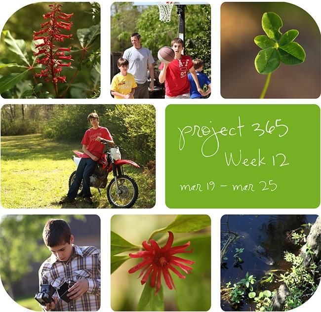 4week12