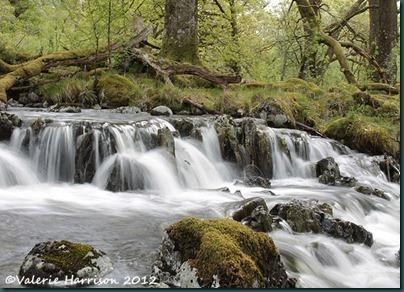 11 waterfall