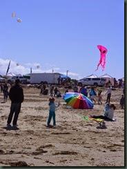 Kite Festival 2014 020