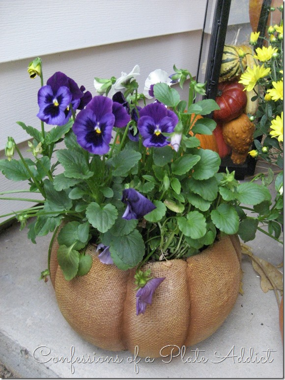 CONFESSIONS OF A PLATE ADDICT Pansies on Porch