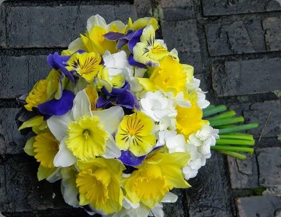 daffodil springwell gardens Judy and Sarah 027