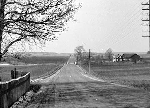 arna-1931.jpg