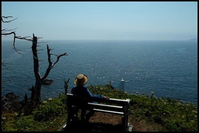 Liberty Point hike Campobello 311