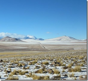 Atacama Autora Thaís Costa
