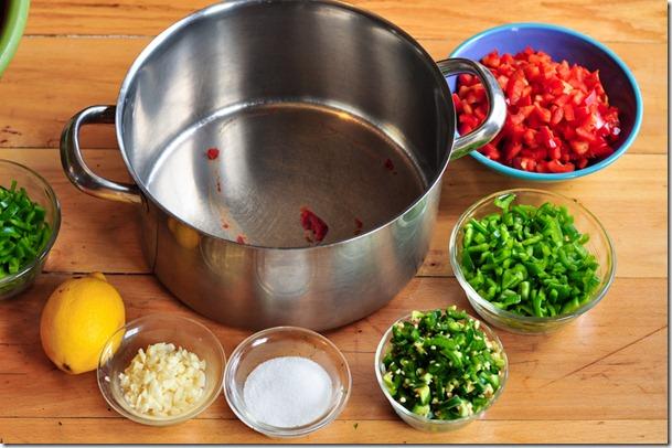 salsa (13 of 63)
