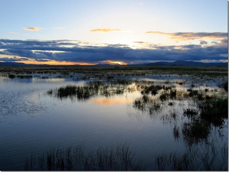 Camas Centennial Marsh 3