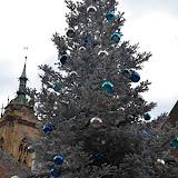 Colmar_2012-12-28_4096.JPG
