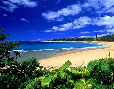 hawaii wallpaper kindle fire - photo #4