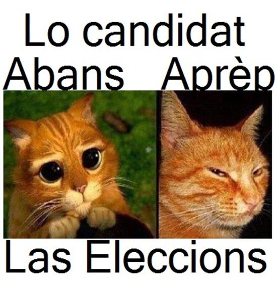actitud electorala