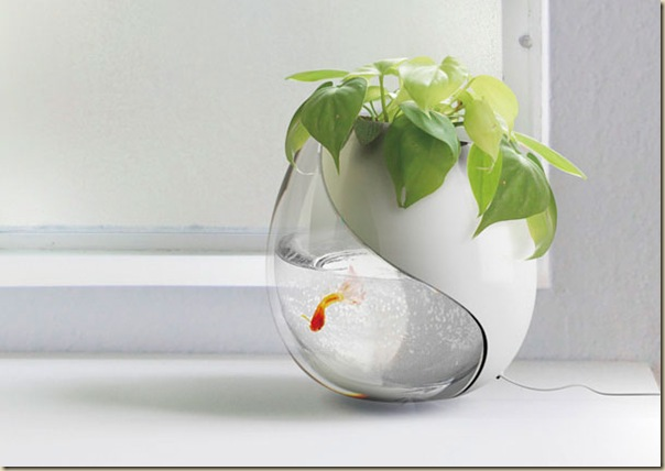 Aquariums créatifs et insolites-002