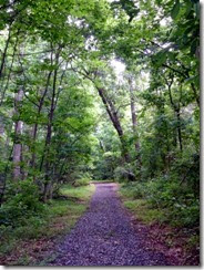 Trail at Natural Chimneys Park