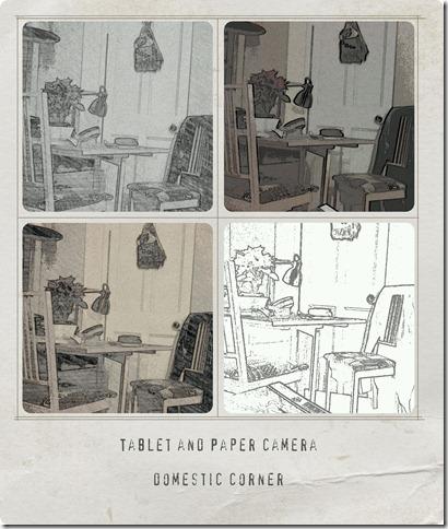 paper-camra-doemstic