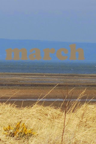 11-mar-15-(4)