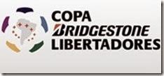 COPA LIB 2015