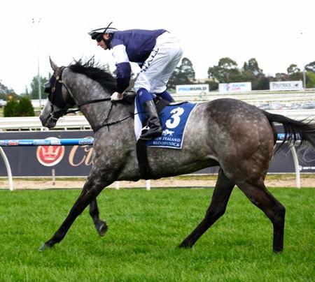 race 6_fawkner 1