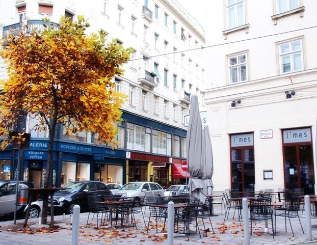 Vienna1013_3