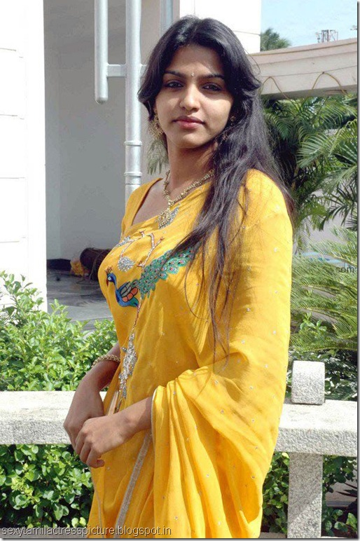 sexy_dhansika_hot_in_saree_stills