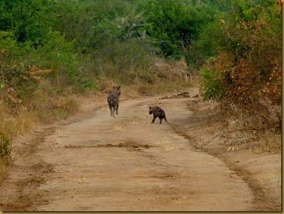 Ziwa, Murchison Falls trip 257