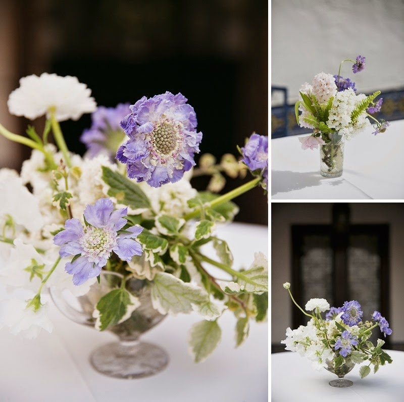 23 Oak and the Owl _ Purple Scabiosa