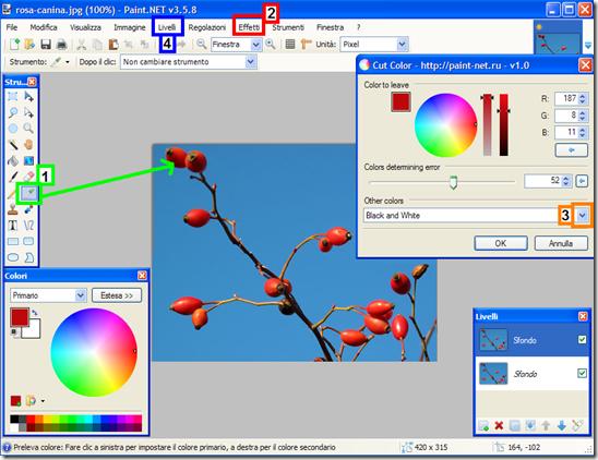 Paint.NET isolare un colore in una foto