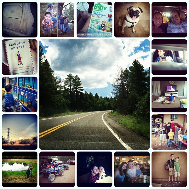 8-17-12 collage
