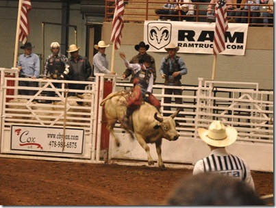 rodeo 022213 (59)