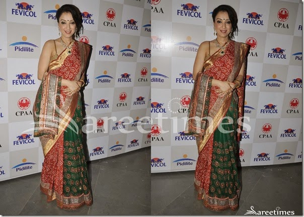 Shaina_NC_Half_and_Half_Saree