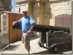 Cannon In Malta (Small)