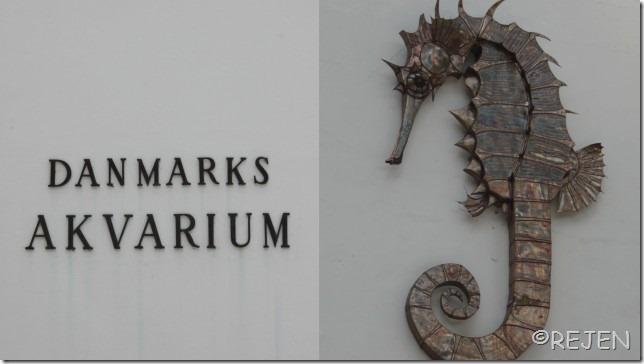 Danmarks Akvarium Juli 2012