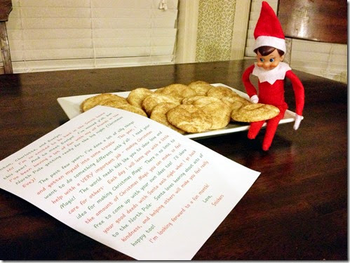Elf on the Shelf Acts of Kindness