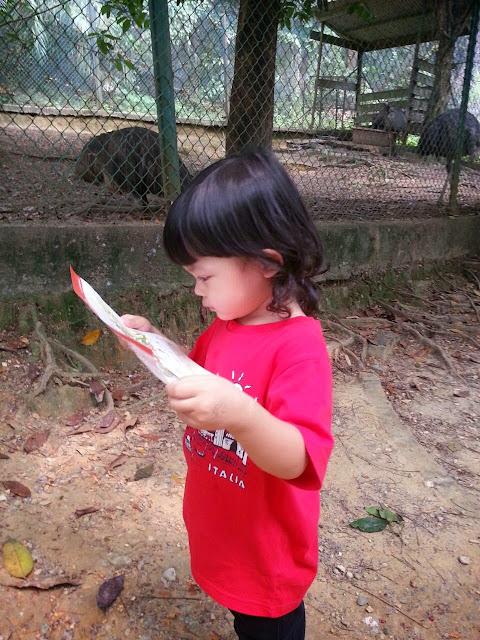 sepagi di Taman Burung KL