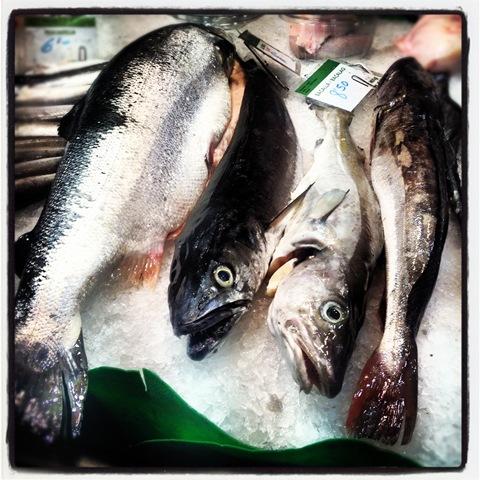 Whole fish at la Boqueria