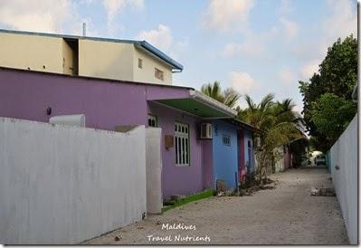 馬爾地夫居民島Mahibadhoo- Amazing Guesthouse (29)