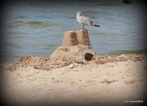 Guarding the sand castle