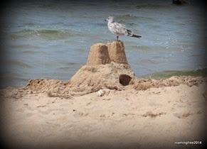 Guarding the sand castle