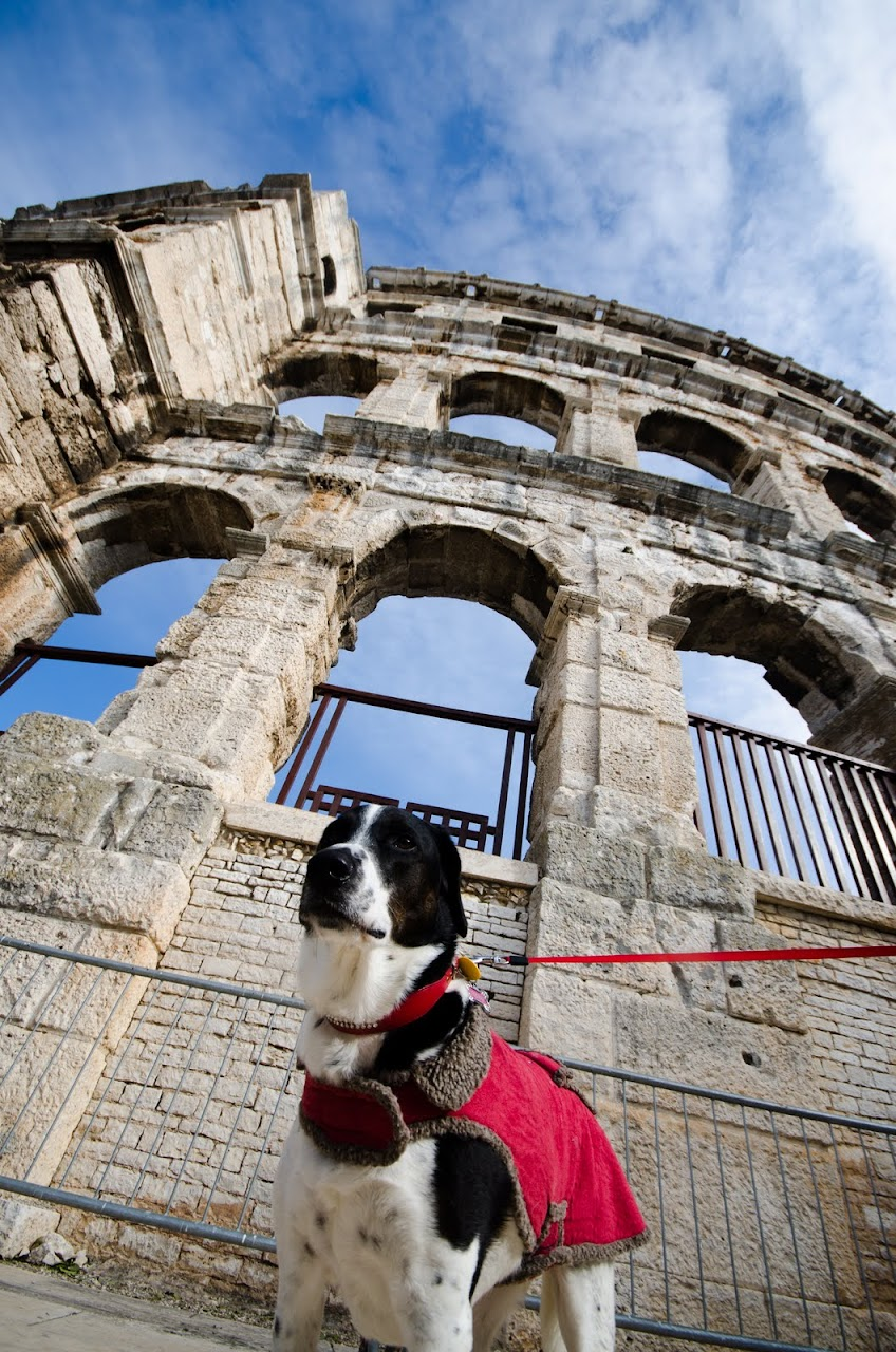 Abby at the Pula Amphitheatre