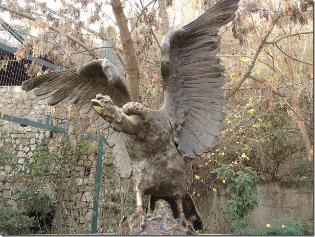 Santiago_Zoo_DSC03965