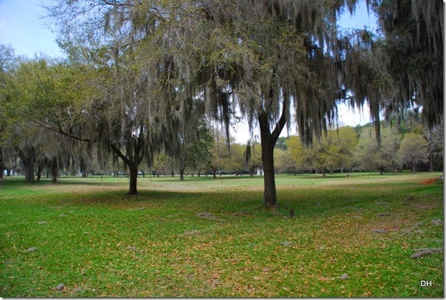 03-21-15 C Fort Frederica NM (13)