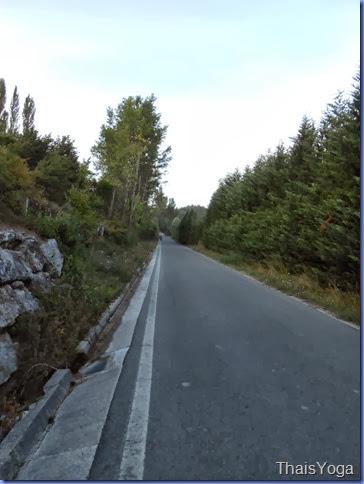 caminho de santiago 367