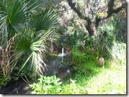 Freshwater Spring