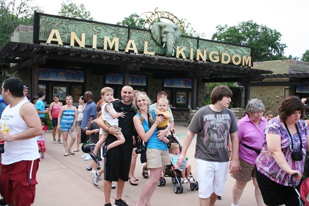 Slickpaw's Magic Kingdom & Animal Kingdom 380