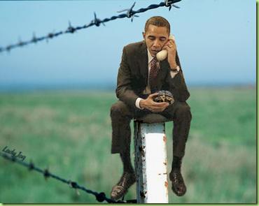 obama_postTurtle